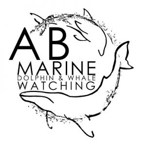 AB Marine Whale and Dolphin Watching